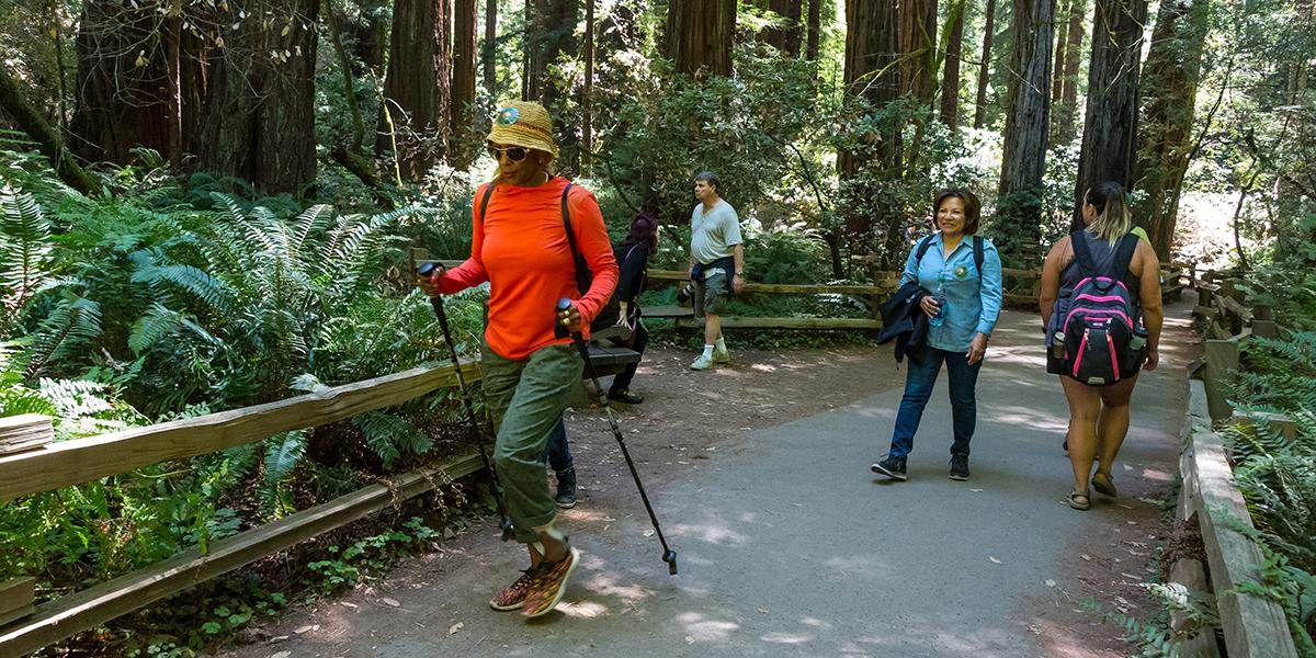 Top 7 Fun Things to Do while Hiking